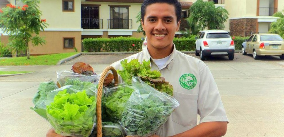 Organic food Box delivery