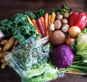Organic food delivery Ottawa