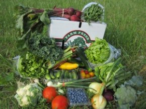 We need your help growing CSA membership: